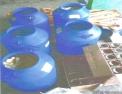 Galões plásticos com palmito-juçara semi-industrializado. Foto: BPAmb Guaratuba